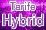 Telekom Hybrid Tarife