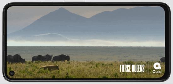 Display vom Google Pixel 5