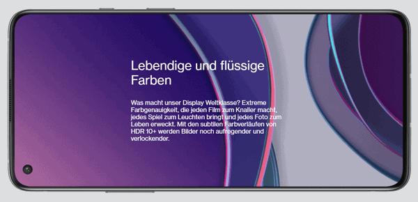 Display vom OnePlus 8T 5G